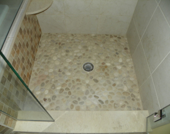 Walk-in Shower with Contemporary Flair